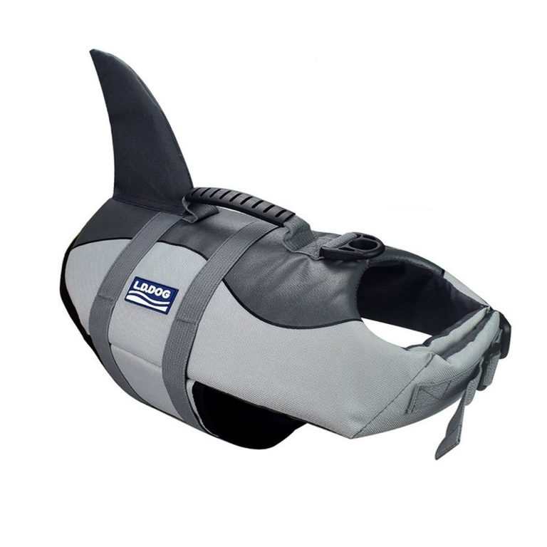 shark life jacket for dogs