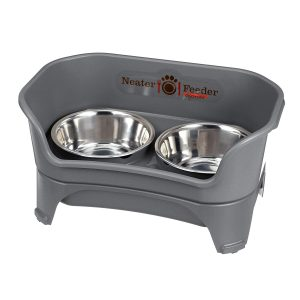 Neater Feeder Dog Bowl