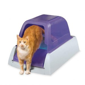 Cleaning Hooded Cat Litter Box